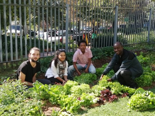 Wits Food Sovereignty Centre